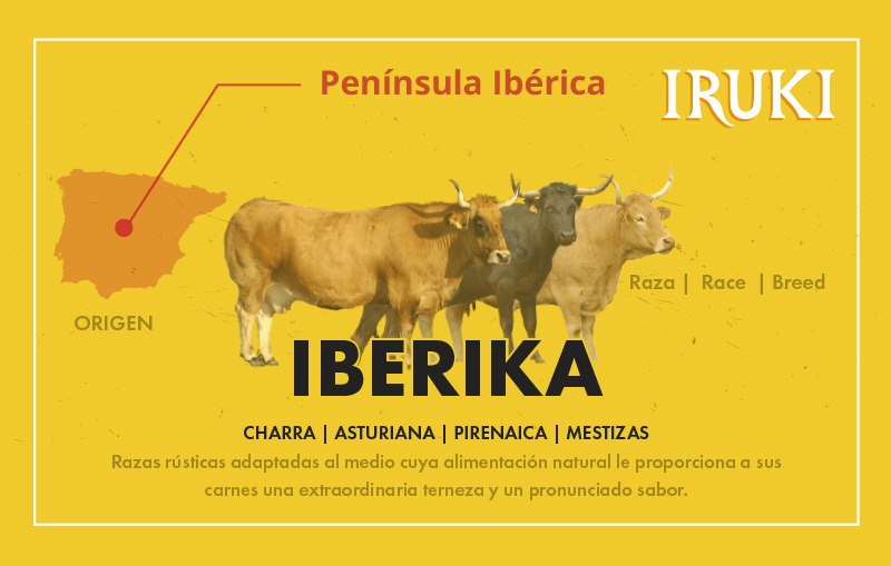razas iberikas iruki